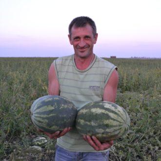 АУ-Продюсер