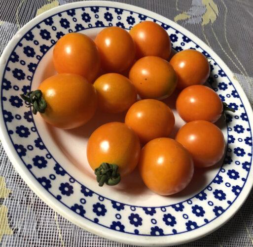 Оранж Олів2